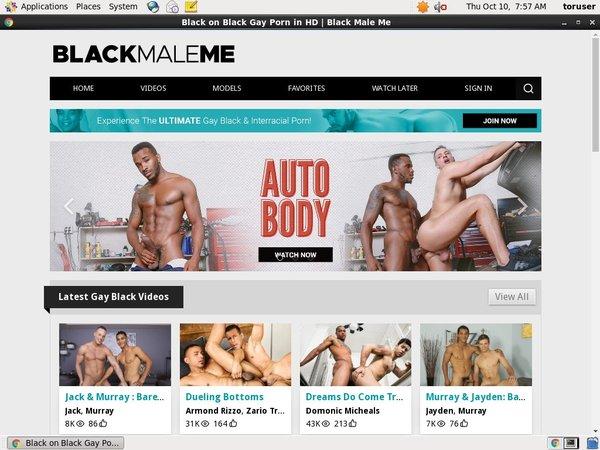 Account Premium Com Blackmaleme
