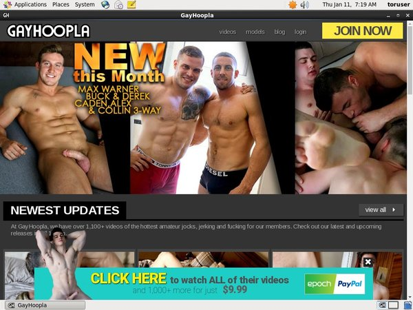 Free Gay Hoopla Premium Acc
